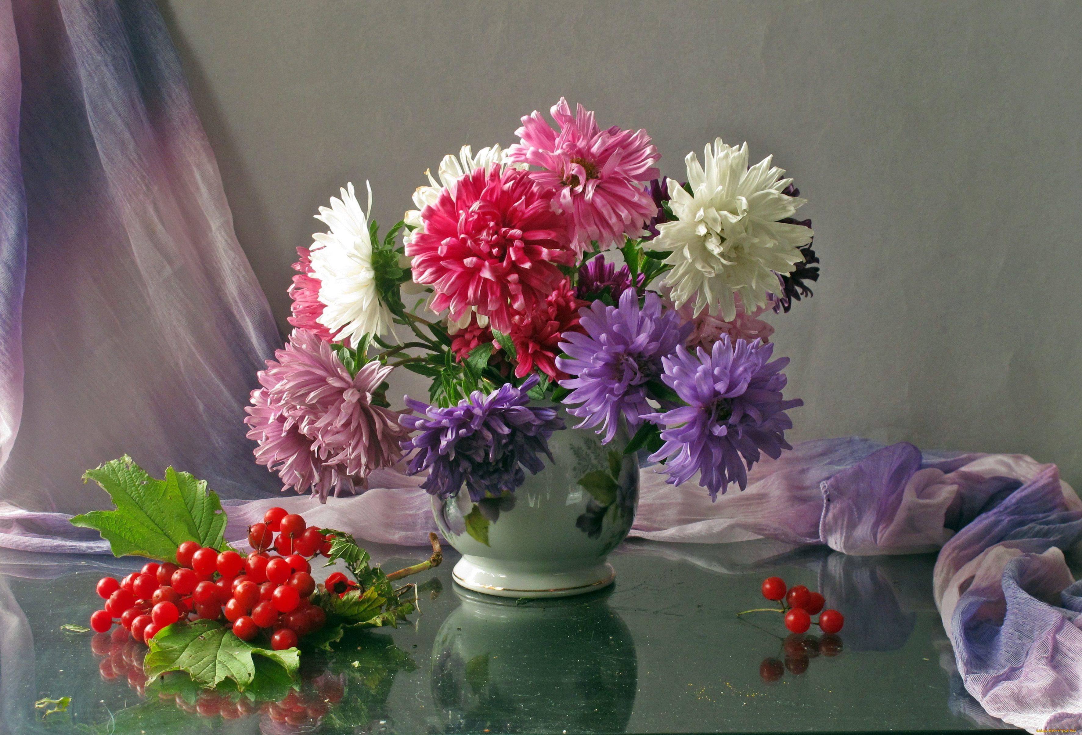 Обои для рабочего стола цветы осенние астры 4
